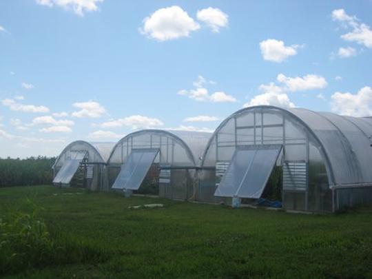franzenburg_greenhouses.jpg